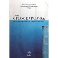 ENTRE O PLANO E A PALAVRA:  REFLEXÕES SOBRE LITERATURA, CINEMA E OUTRAS ARTES
